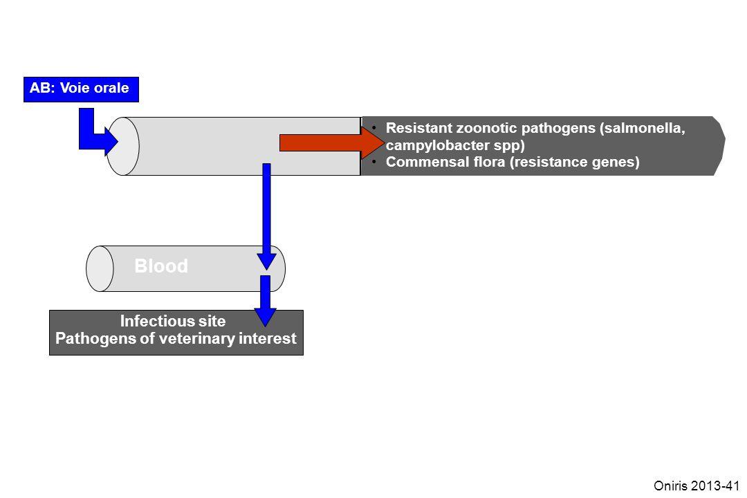 Pathogens of veterinary interest