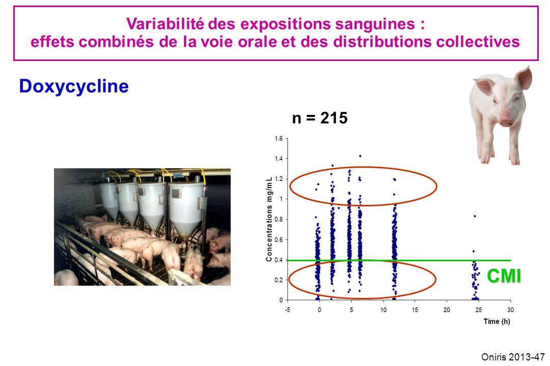 Doxycycline CMI Variabilité des expositions sanguines :