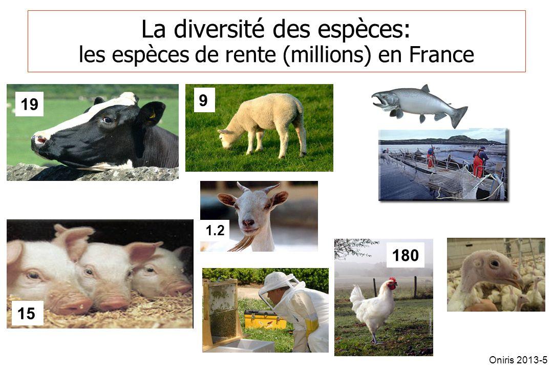 La diversité des espèces: les espèces de rente (millions) en France