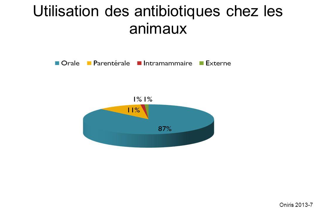 Utilisation des antibiotiques chez les animaux