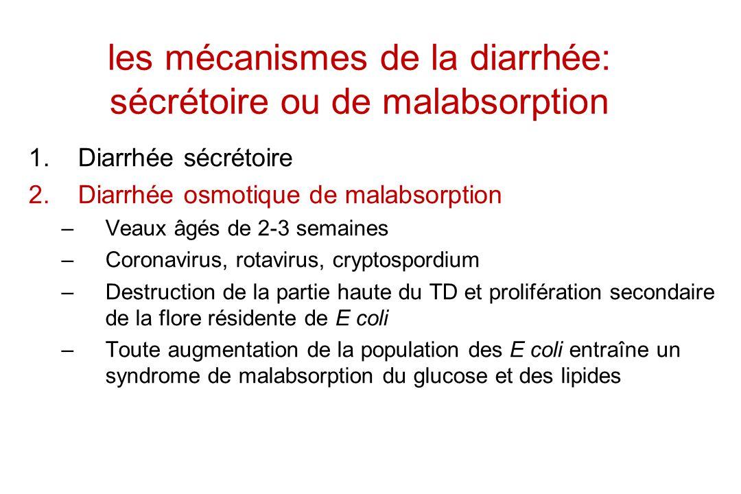 les mécanismes de la diarrhée: sécrétoire ou de malabsorption