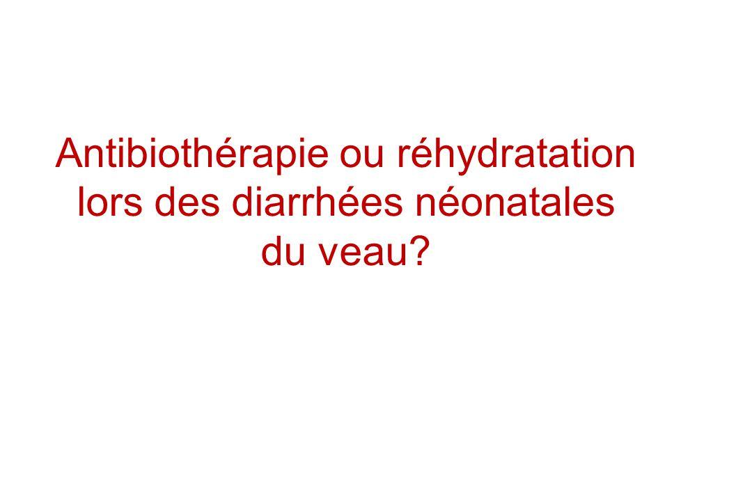 Antibiothérapie ou réhydratation lors des diarrhées néonatales du veau