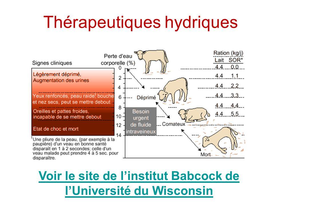 Thérapeutiques hydriques