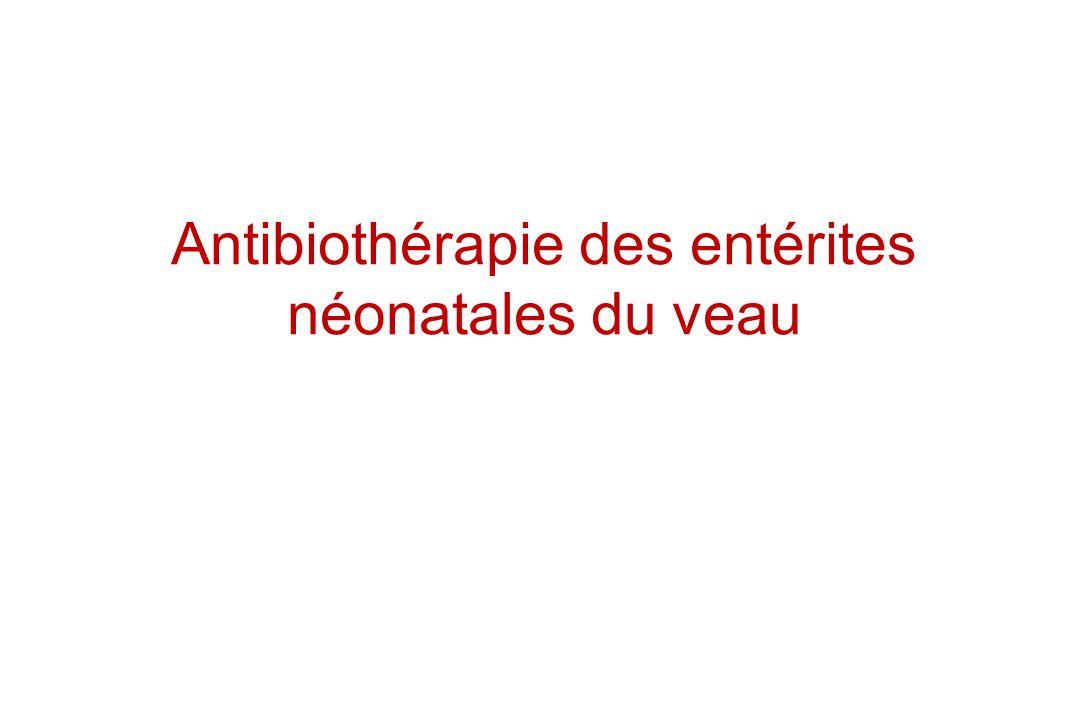 Antibiothérapie des entérites néonatales du veau