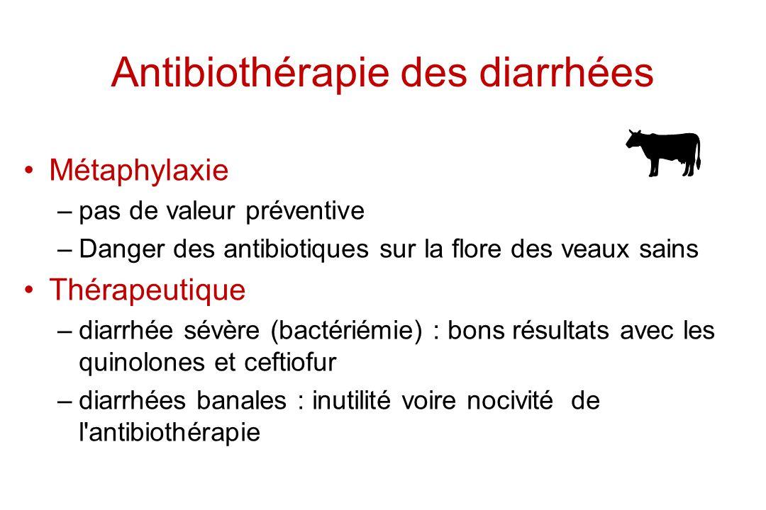 Antibiothérapie des diarrhées