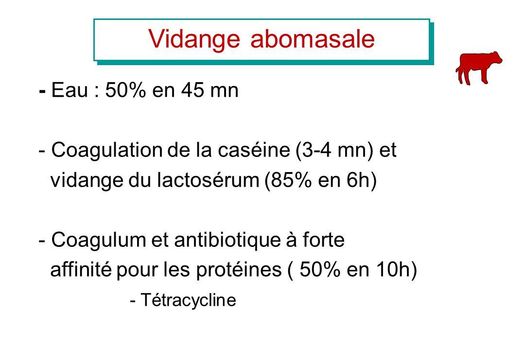 Vidange abomasale - Eau : 50% en 45 mn