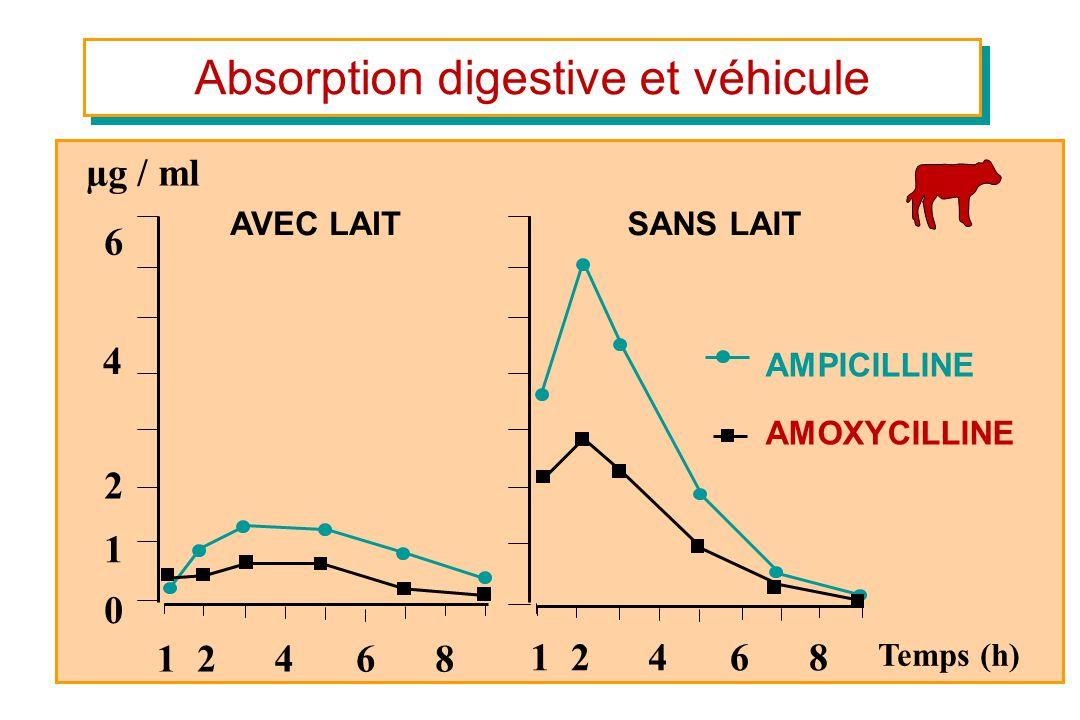Absorption digestive et véhicule