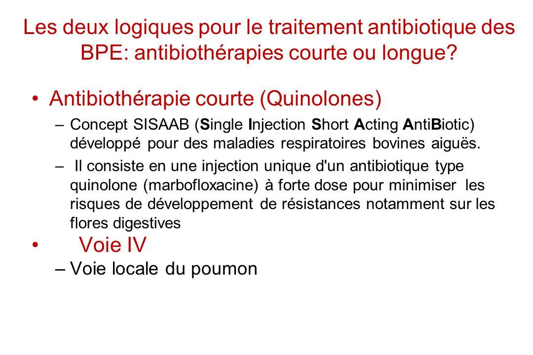 Antibiothérapie courte (Quinolones)