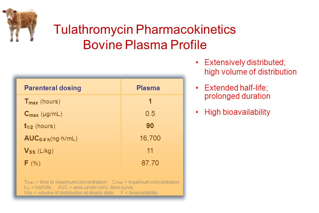 Tulathromycin Pharmacokinetics Bovine Plasma Profile