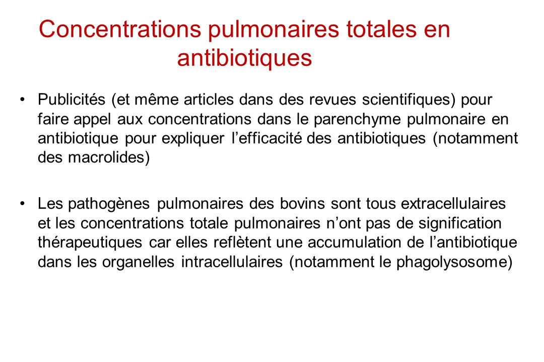 Concentrations pulmonaires totales en antibiotiques