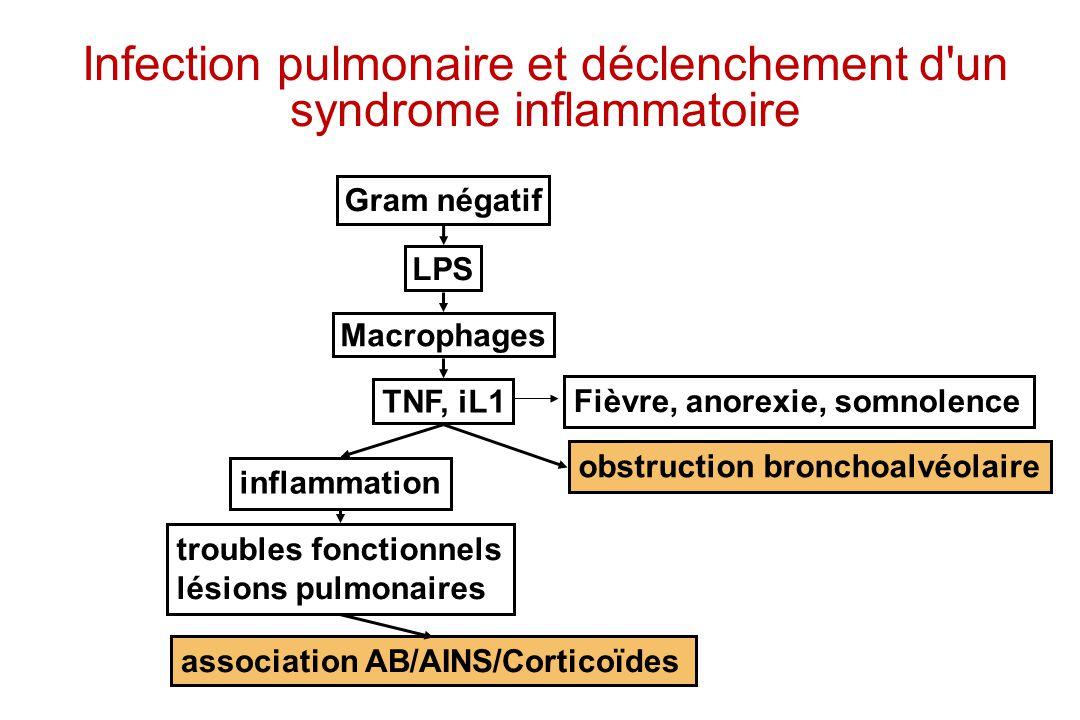 Infection pulmonaire et déclenchement d un syndrome inflammatoire