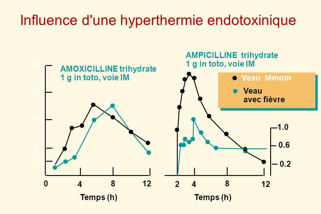 Influence d une hyperthermie endotoxinique