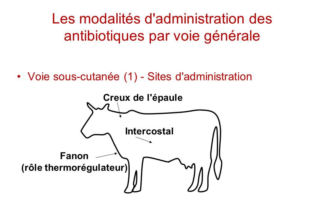 Les modalités d administration des antibiotiques par voie générale
