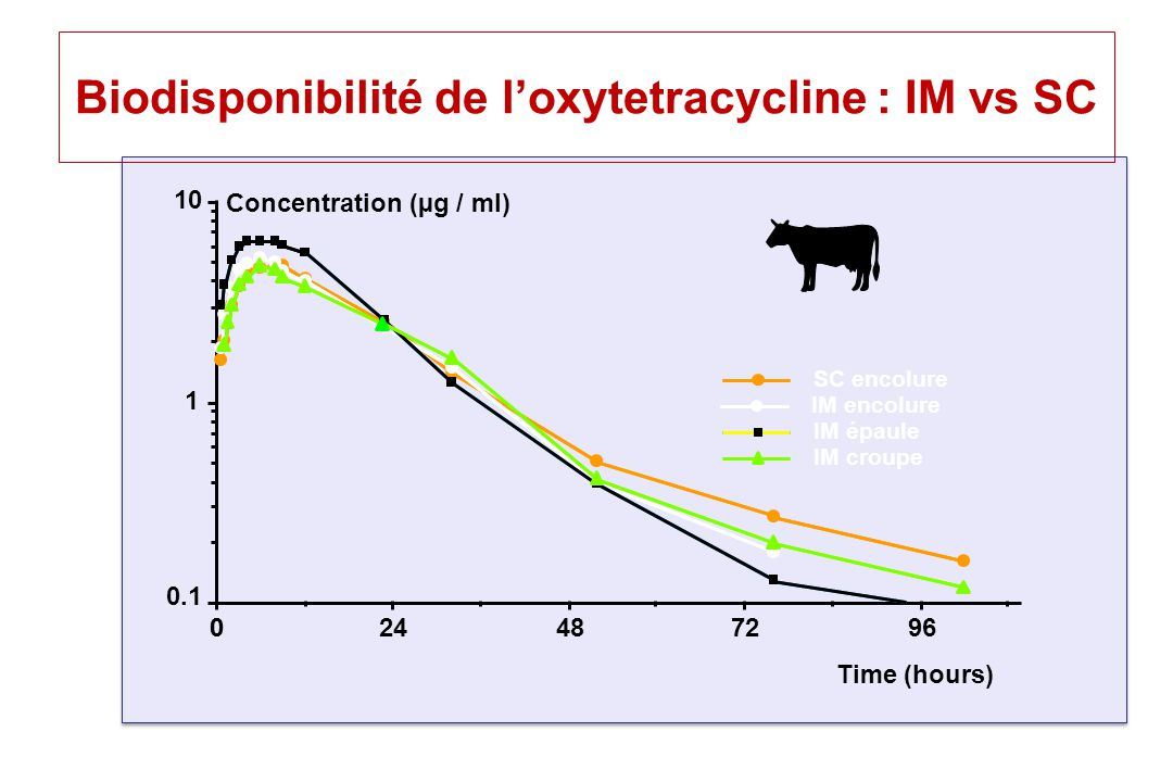 Biodisponibilité de l'oxytetracycline : IM vs SC