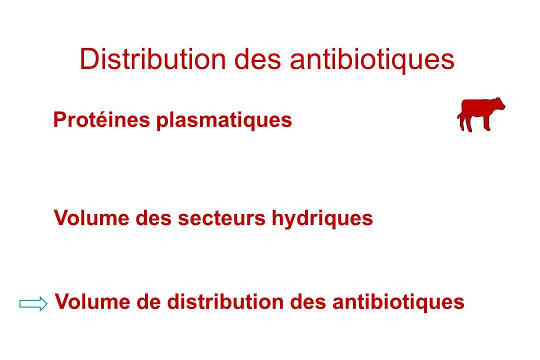 Distribution des antibiotiques