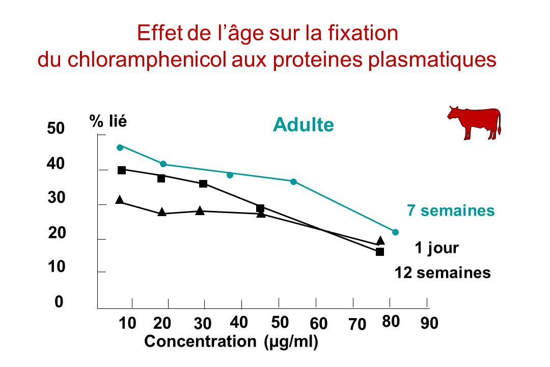 Effet de l'âge sur la fixation du chloramphenicol aux proteines plasmatiques