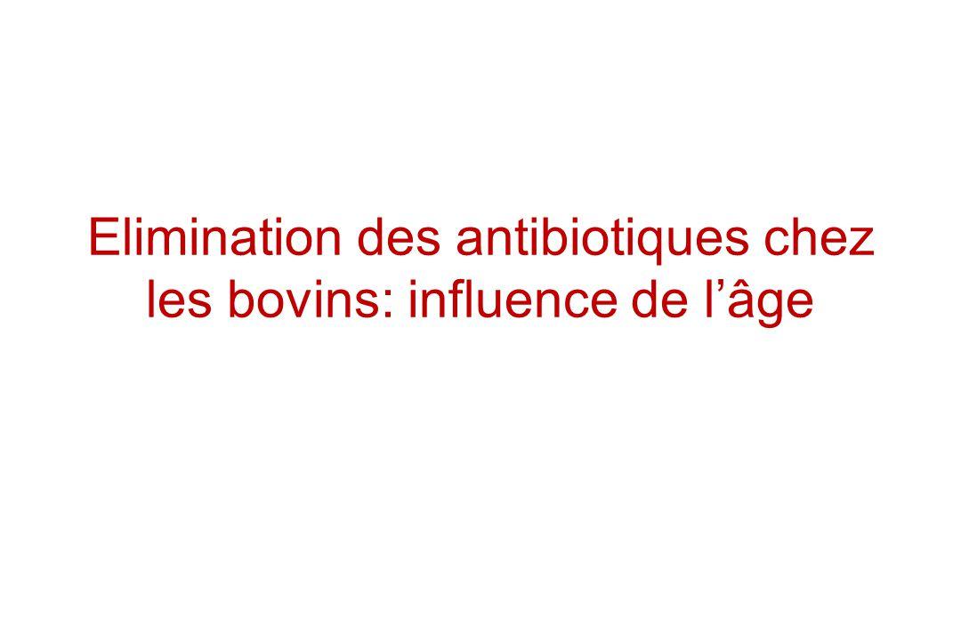 Elimination des antibiotiques chez les bovins: influence de l'âge