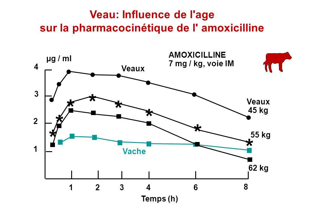 Veau: Influence de l age sur la pharmacocinétique de l amoxicilline