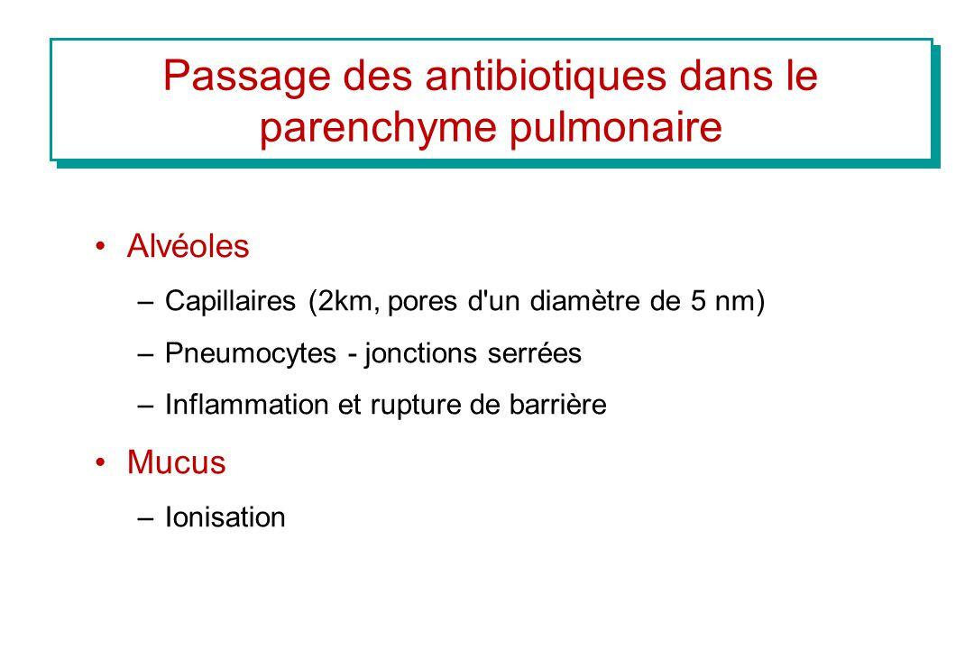 Passage des antibiotiques dans le parenchyme pulmonaire