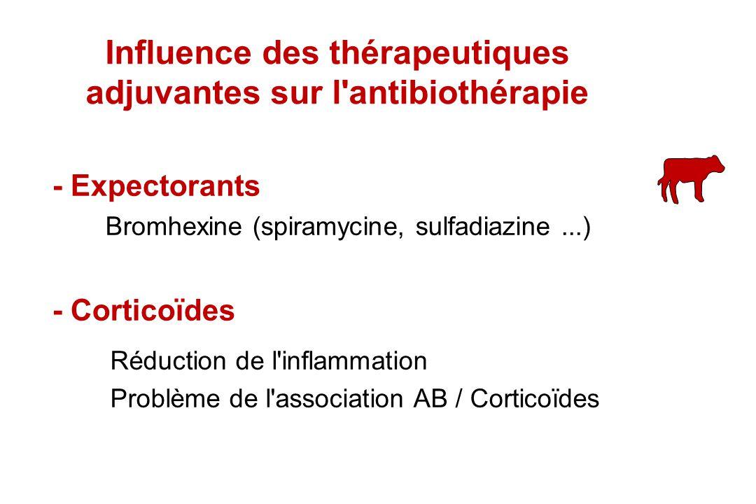 Influence des thérapeutiques adjuvantes sur l antibiothérapie
