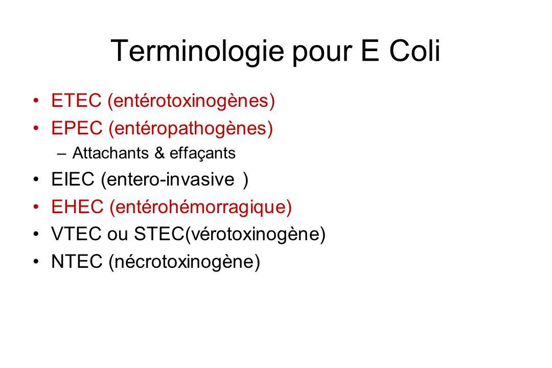 Terminologie pour E Coli