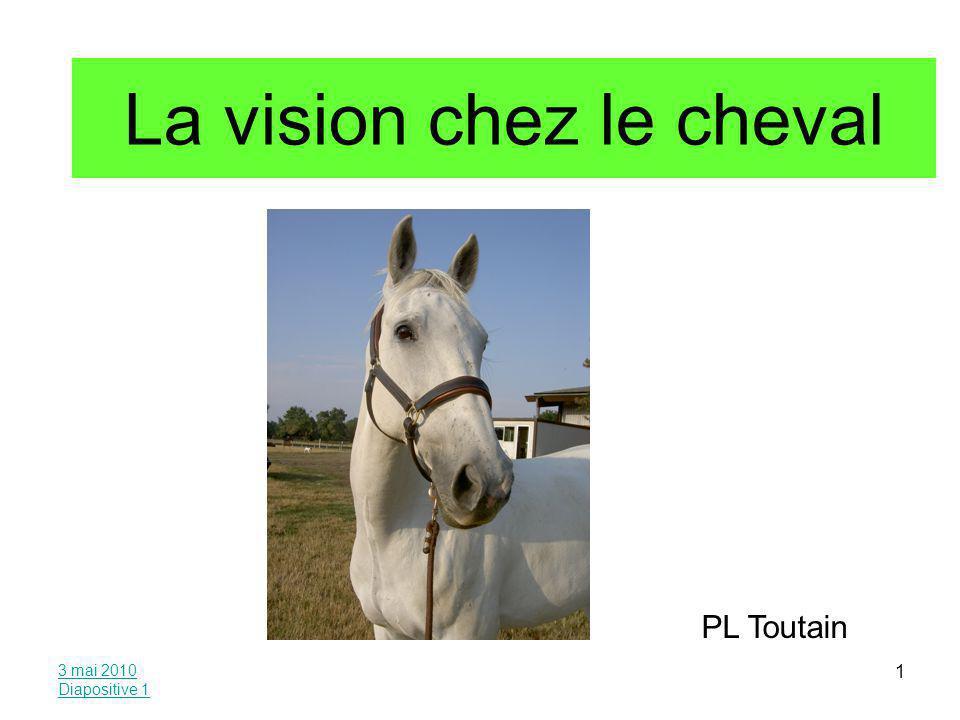 La vision chez le cheval