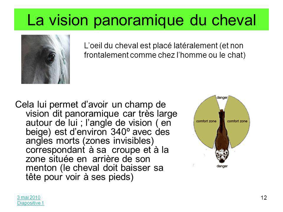La vision panoramique du cheval