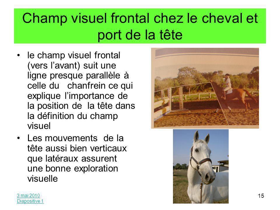 Champ visuel frontal chez le cheval et port de la tête