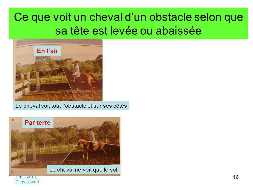 Ce que voit un cheval d'un obstacle selon que sa tête est levée ou abaissée