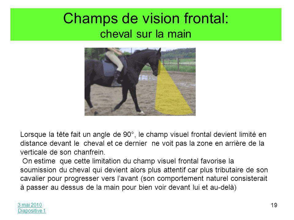 Champs de vision frontal: cheval sur la main