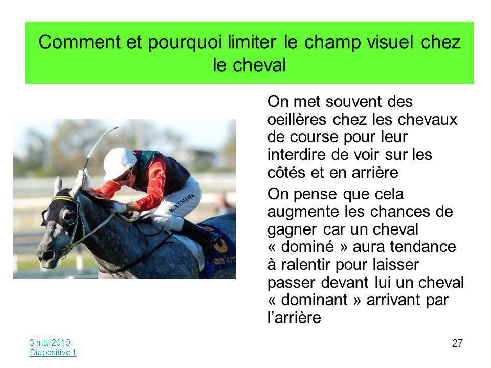 Comment et pourquoi limiter le champ visuel chez le cheval