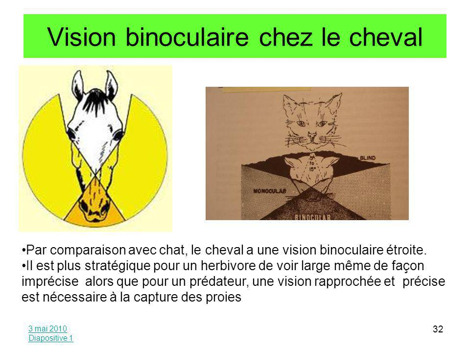 Vision binoculaire chez le cheval