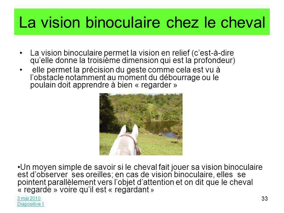 La vision binoculaire chez le cheval