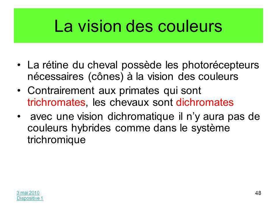 La vision des couleurs La rétine du cheval possède les photorécepteurs nécessaires (cônes) à la vision des couleurs.