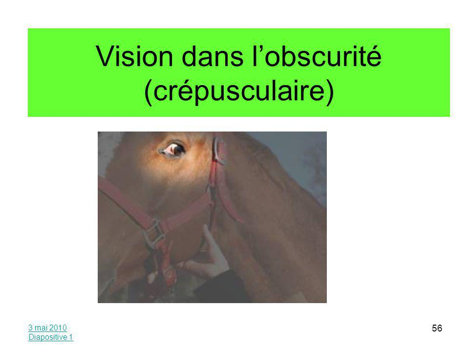 Vision dans l'obscurité (crépusculaire)