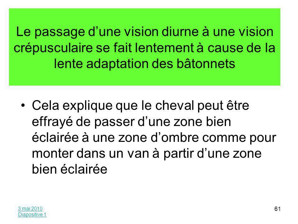 Le passage d'une vision diurne à une vision crépusculaire se fait lentement à cause de la lente adaptation des bâtonnets