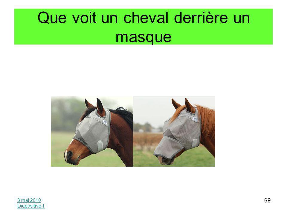 Que voit un cheval derrière un masque