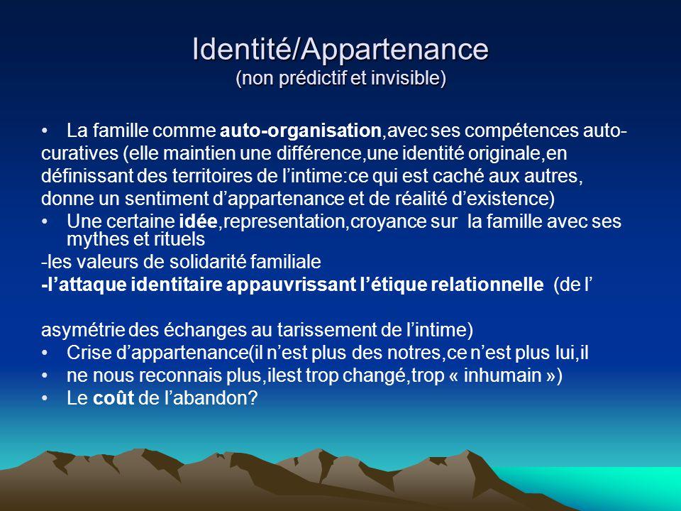 Identité/Appartenance (non prédictif et invisible)