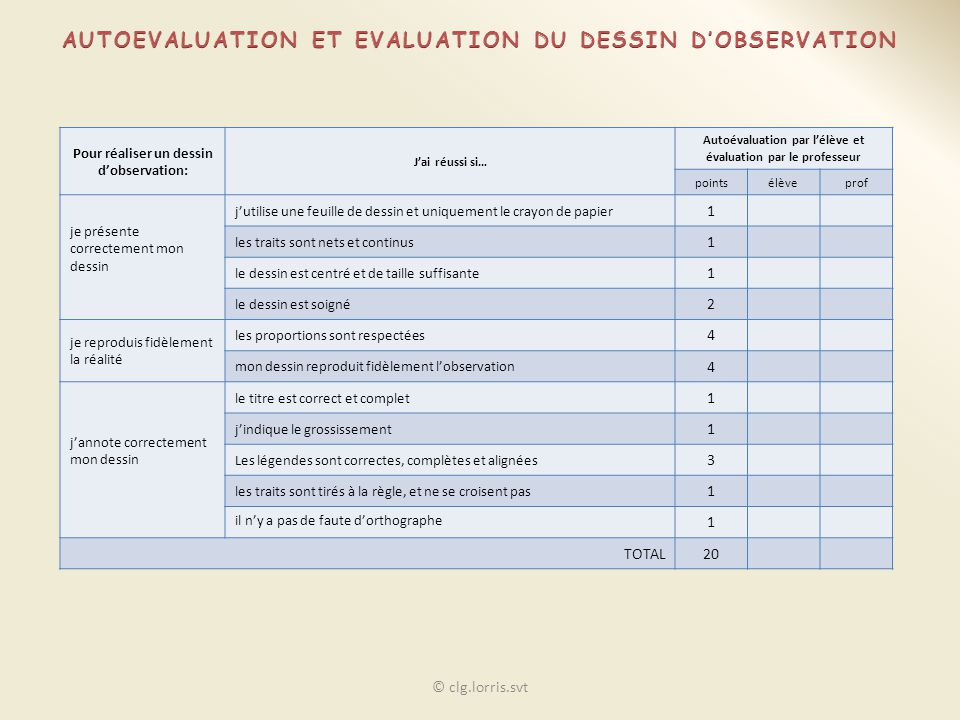 AUTOEVALUATION ET EVALUATION DU DESSIN D'OBSERVATION
