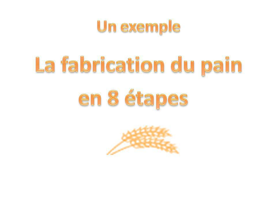 La fabrication du pain en 8 étapes