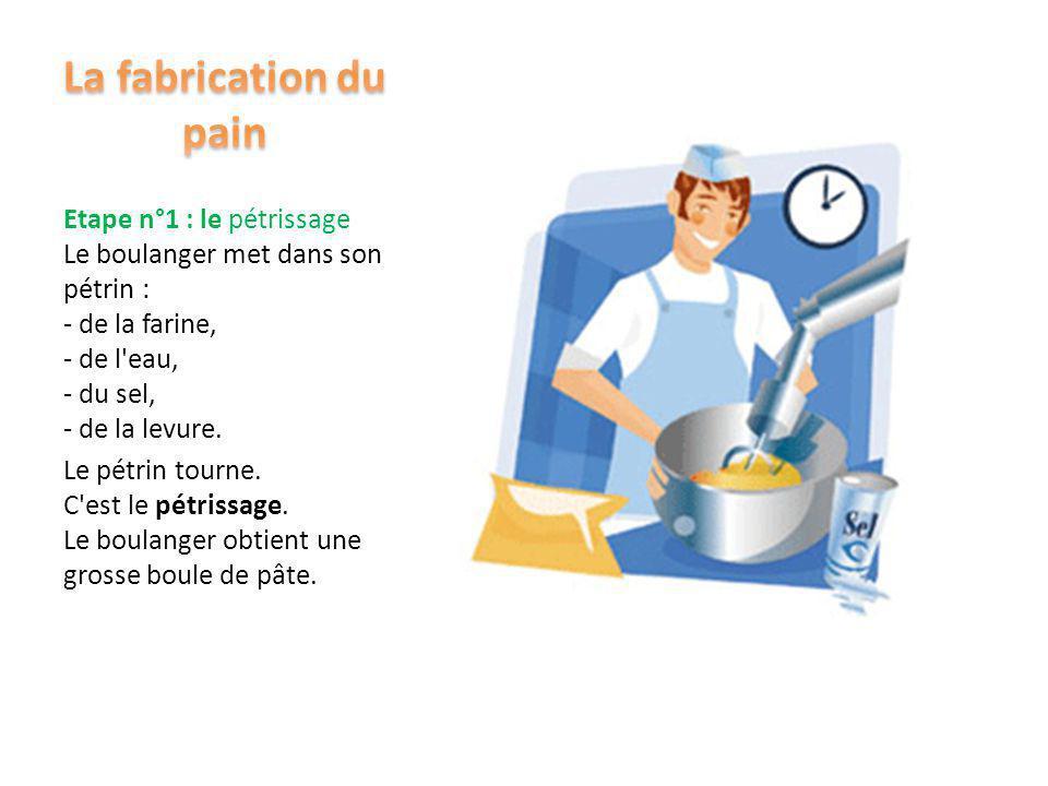 La fabrication du pain Etape n°1 : le pétrissage Le boulanger met dans son pétrin : - de la farine, - de l eau, - du sel, - de la levure.