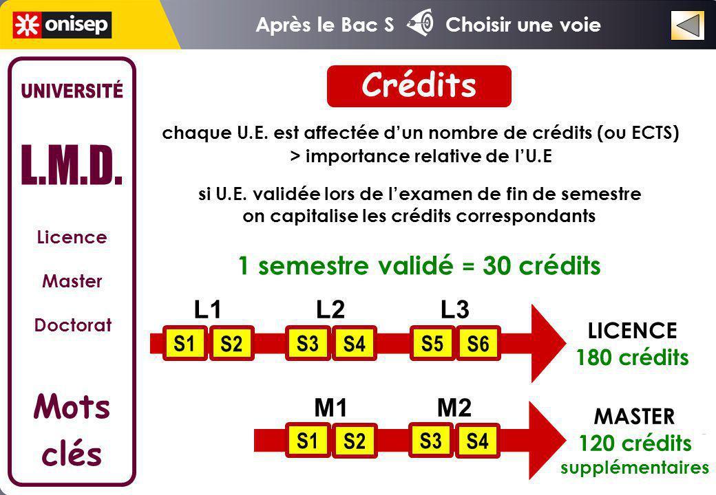 Crédits UNIVERSITÉ L.M.D. Mots clés 1 semestre validé = 30 crédits L1