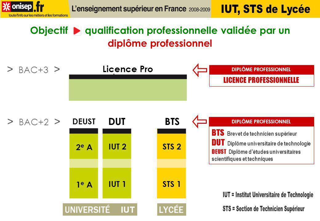 IUT = Institut Universitaire de Technologie