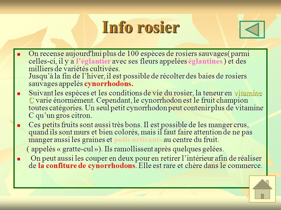 Info rosier