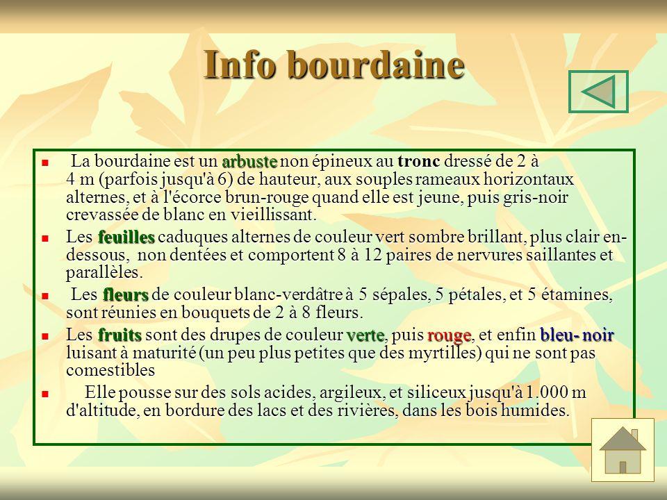 Info bourdaine