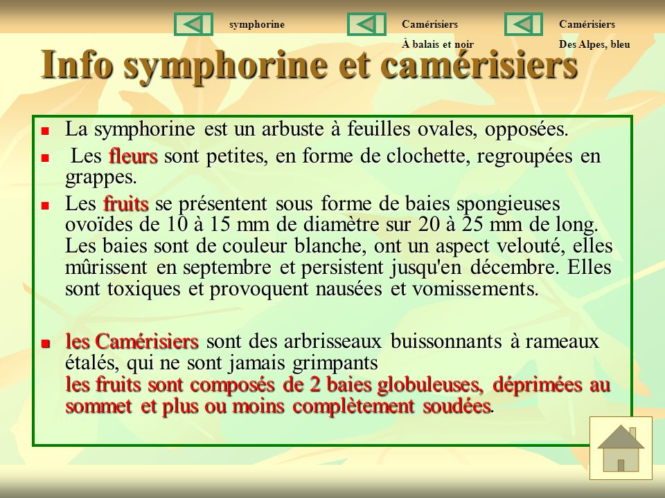 Info symphorine et camérisiers