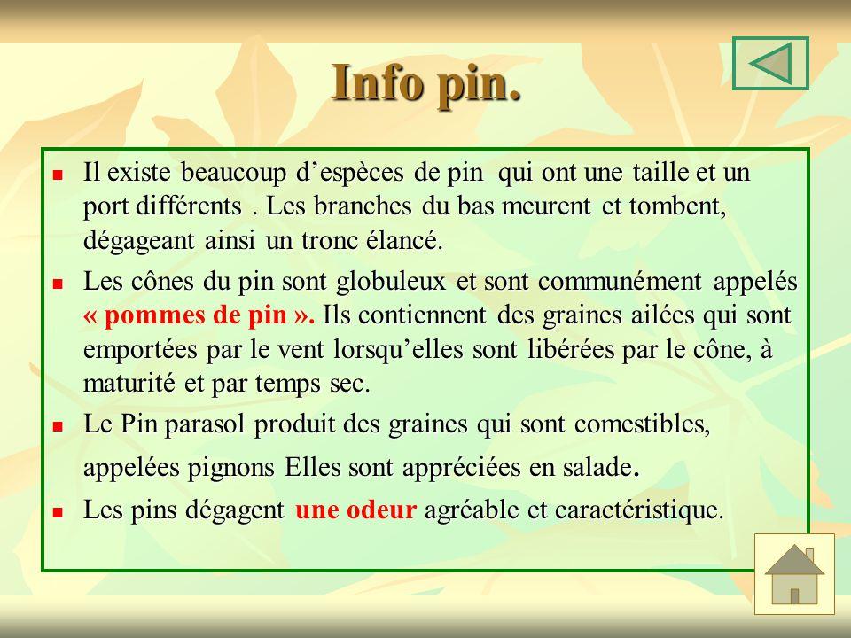 Info pin.