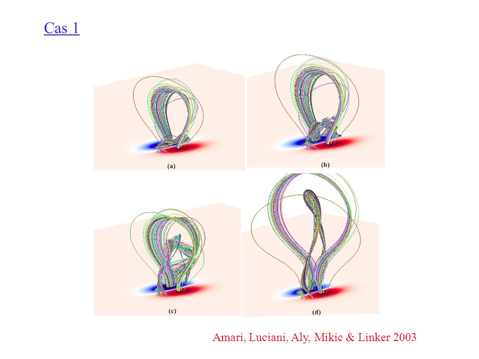 Cas 1 Amari, Luciani, Aly, Mikic & Linker 2003