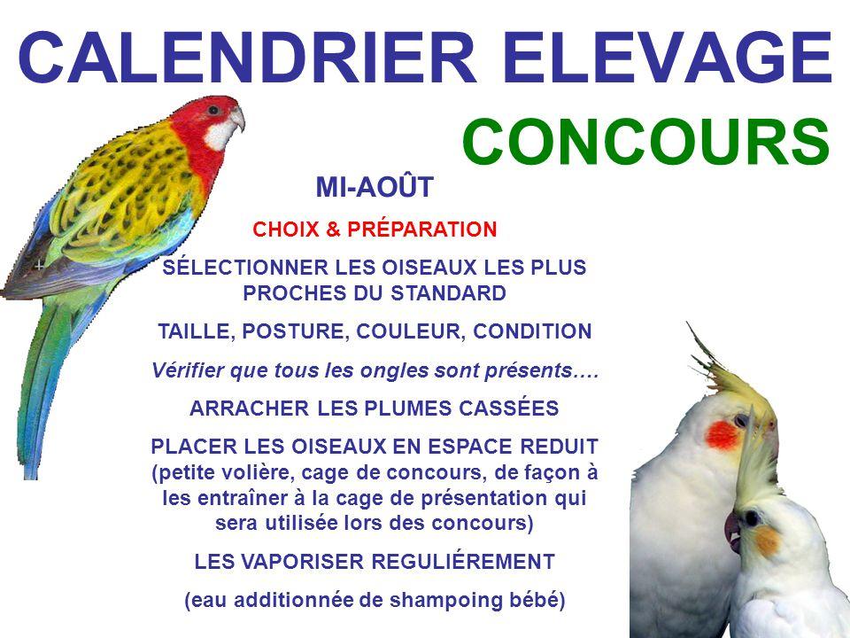 CALENDRIER ELEVAGE CONCOURS MI-AOÛT CHOIX & PRÉPARATION