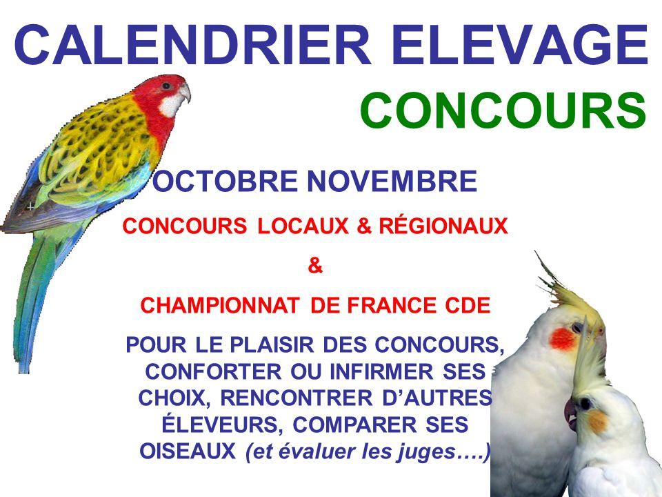 CONCOURS LOCAUX & RÉGIONAUX CHAMPIONNAT DE FRANCE CDE